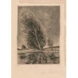 №22б Б.н. (Дерево. Ветер)