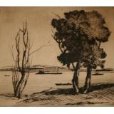№71б Б.н. (Два дерева)